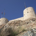 Fort wMuscacie