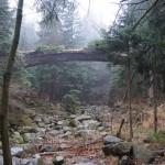 Zaczarowany most zinnej perspektywy