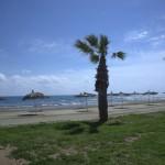 Plaża McKenzie