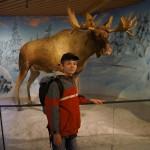 Muzeum Holmenkollen