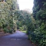 Ogród Botaniczny wBelfascie