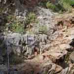Na szlaku nr7 (Wadi Kadisza)