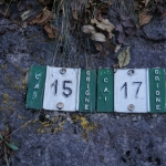 ... którym idziemy 15 czy 17 ?