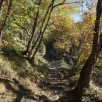 ... piękna włoska jesień