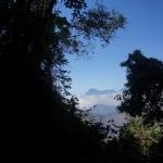 San Pedro Trip