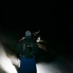 Acatenango Trip