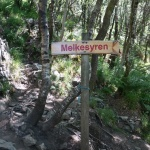 Melkesyren - cokolwiek to znaczy