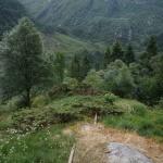 Ścieżka etno