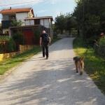 Pieś prowadzi nas na szlaku