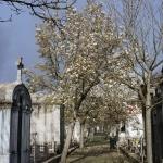 Cemiterio do Prado do Repouso