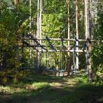 Sopot - Adventure Park