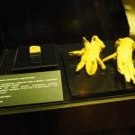 Rękawiczki zludzkiej skóry