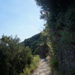 Droga do Vernazza