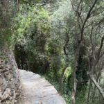 Szlak zVernazza doCorniglia
