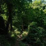 Trasa dokościoła Madonna del Soccorso