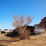 Obóz Aied`a