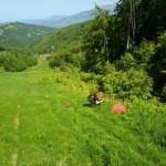 Narciarska trasa wgórę
