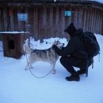 Husky Park - wioska św.Mikołaja