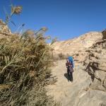 Koryto rzeki okresowej Nahal Akev