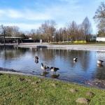 Westfalenpark