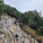 Szlak wkierunku Stratenec