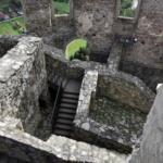 Zamek nadrzeką Wag