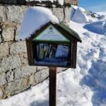 Mini biblioteka